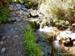 back creek tr