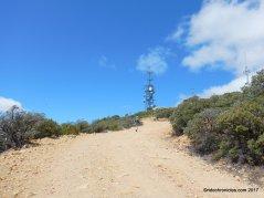 Mt St helena trail