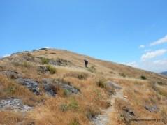 to maguire peak