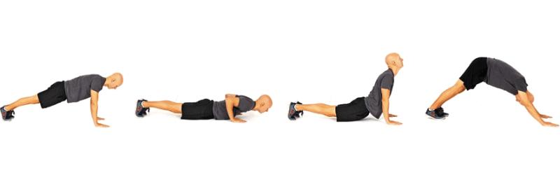 Dynamic Warm-up Exercise - Vinyasa Flow
