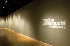 Interdigitate Installation view 2007