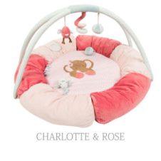 500_charlotte_circle