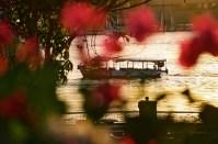 Yuri Martins Fontes / Egito-2007 / Luxor: Barco de passageiros - Rio Nilo