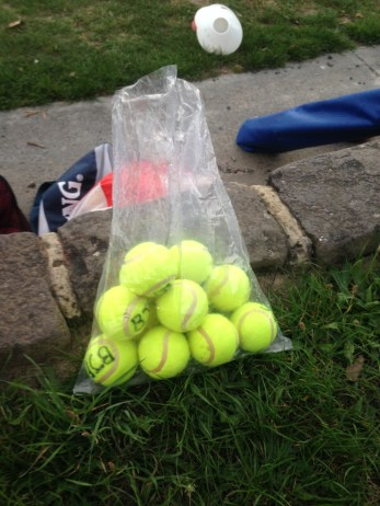Tennis Balls, used in the program to encourage kicking accuracy