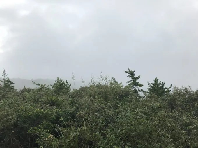 多度山の海の見える展望台の曇りの景色