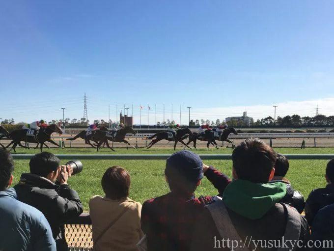 中京競馬場のレース