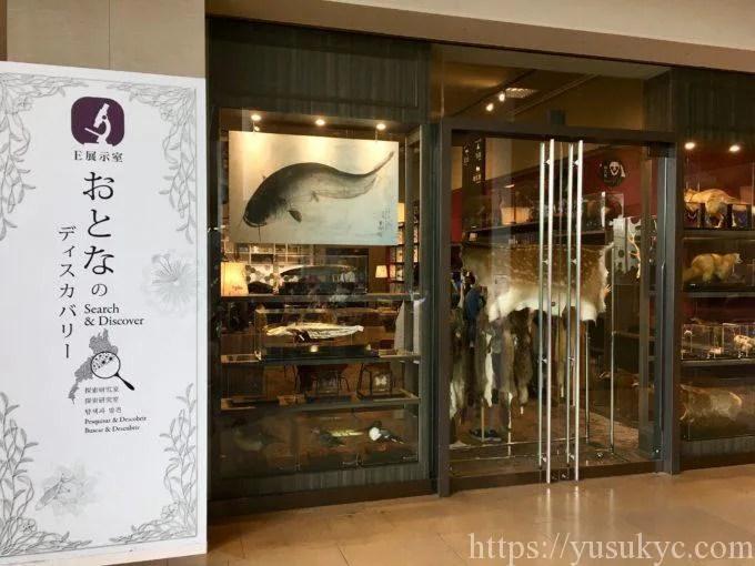 琵琶湖博物館おとなのディスカバリー