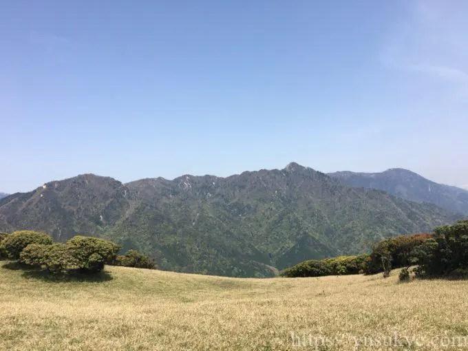 入道ヶ岳登山北尾根登山道の風景
