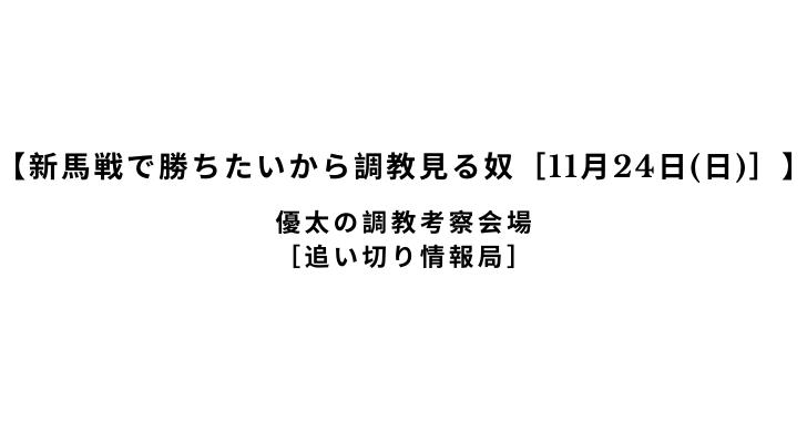 【新馬戦で勝ちたいから調教見る奴[11月24日(日)]】