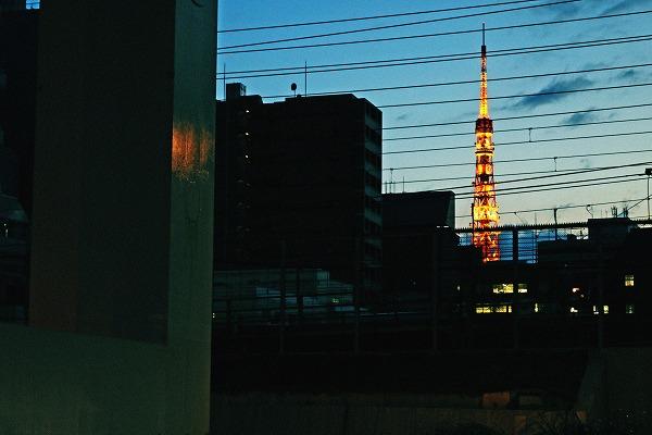 遠くの東京タワー