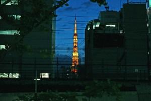 隙間の東京タワー