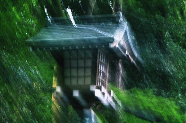 明治神宮の灯篭
