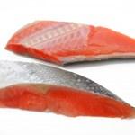 犬が「鮭」を食べて大丈夫?アレルギーや毒は?その対策は?