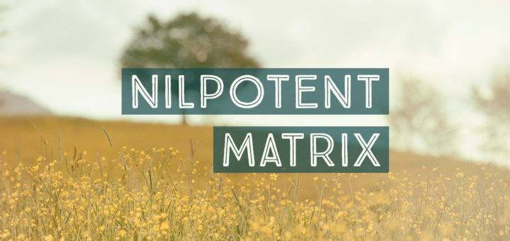 Nilpotent Matrix Problems and Solutions