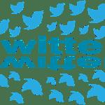 Twitterアフィリエイト開始2カ月で4万円稼いだ経緯とその末路