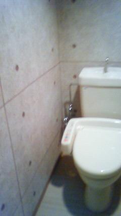トイレ壁紙コンクリート打ちっぱなし風