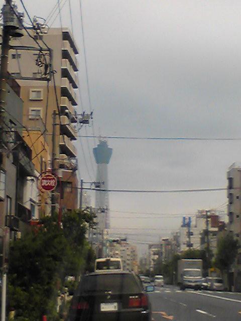 都内で迷子公開前のスカイタワー