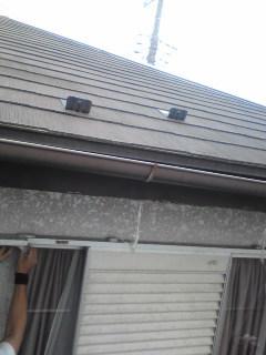 大屋根には登らないこわいから