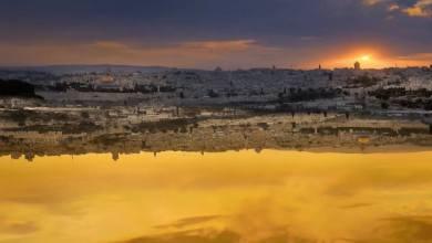 Photo of פסטיבל מקודשת בירושלים 2017