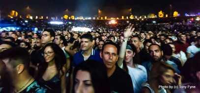 רובין שולץ בישראל. צילום: טוני פיין