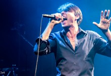 Suede, Photo by Tomer Gilat