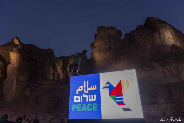 דיויד ברוזה - קונצרט למען השלום. צילום זיו ברק