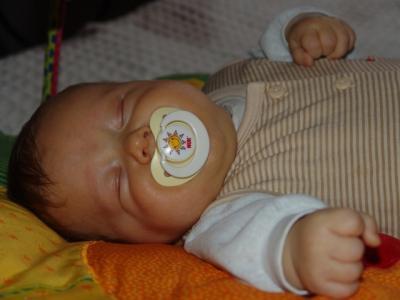 Ein Verdauungsschläfchen nach dem Essen ist perfekt