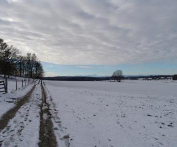 Wir gehen in der Winterlandschaft spazieren