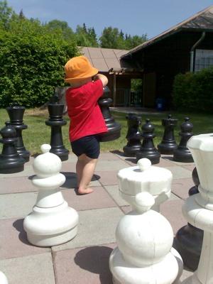 Jetzt ist die Schachpartie perfekt