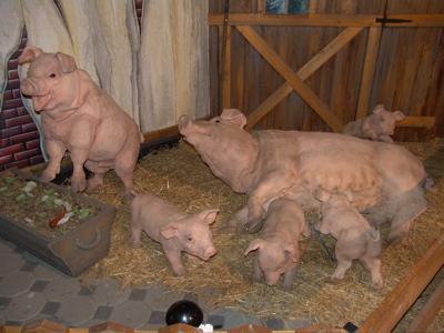 … und natürlich Schweinchen