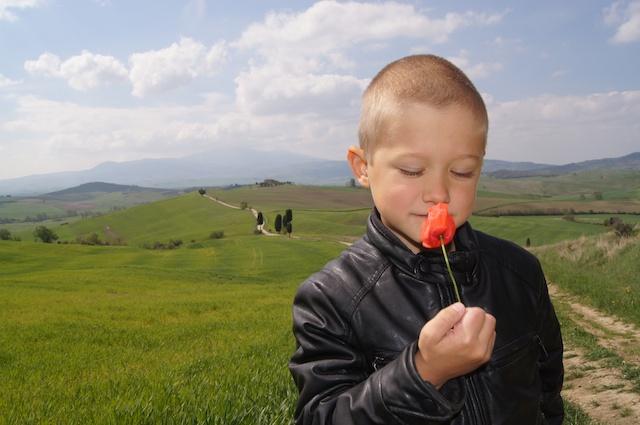 Yves ama anche i fiori