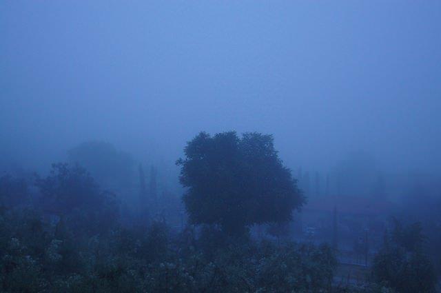 Fonzie non piace la nebbia