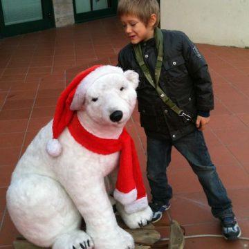 Fonzie piacciono gli orsi polari