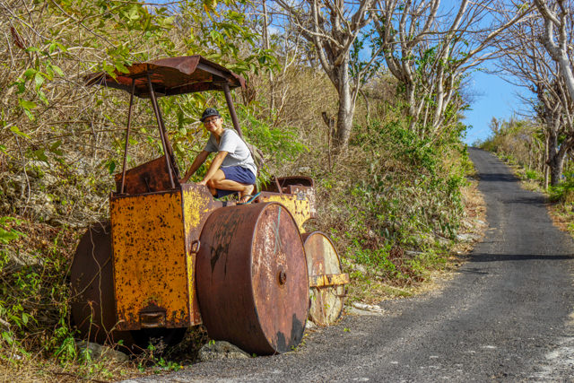 What a cool road roller!
