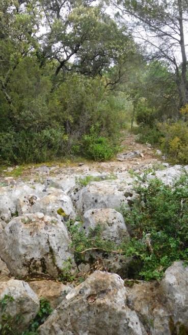 Les pierres du chemin