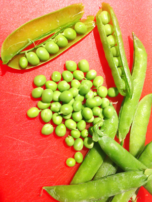 Peas from farmers Market photoshop