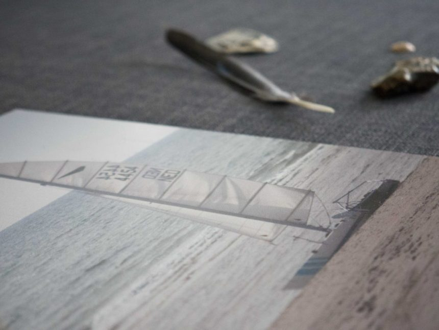 close view shine dibond alluminium shels feather print wall decoration fotofabriek