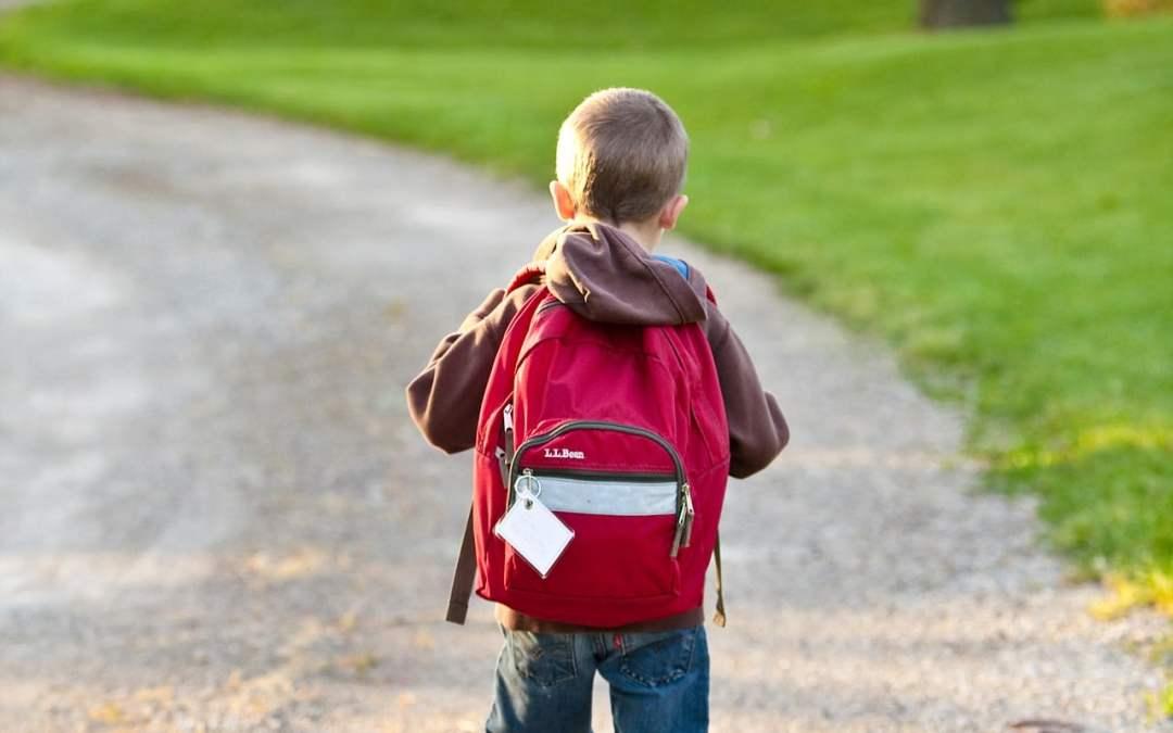 ¿Por qué hay niños homeschoolers que piden ir o volver a la escuela?