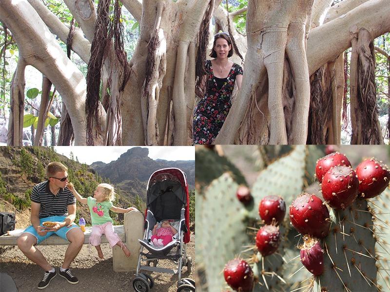 Botanische tuin Gran Canaria