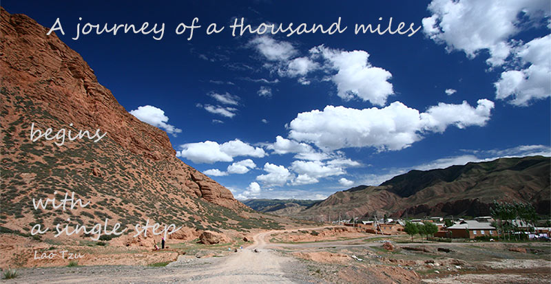 A journey of a thousand miles begins with a single step - Lao-Tzu