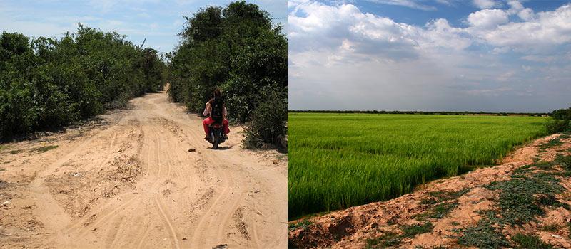Mototaxi naar Kampong Phluk