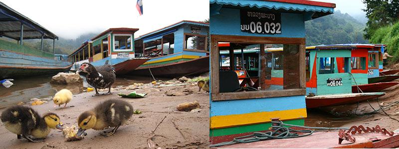 Laos Nong Kiaw naar Muang Ngoi