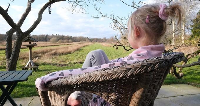Fijne accommodatie Drenthe in Huisje in het Veld