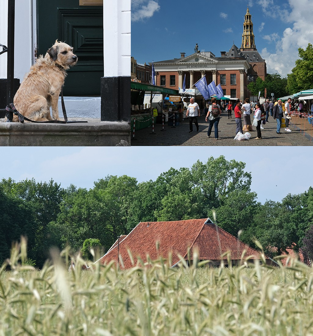 Groningen stad en platteland