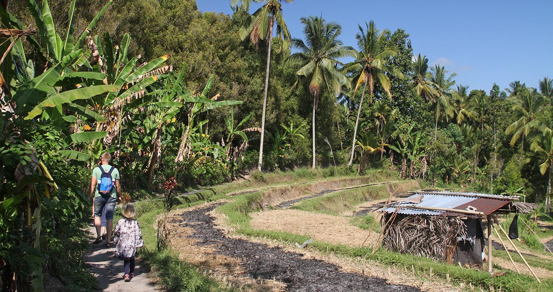 Munduk - hoogtepunt op Bali