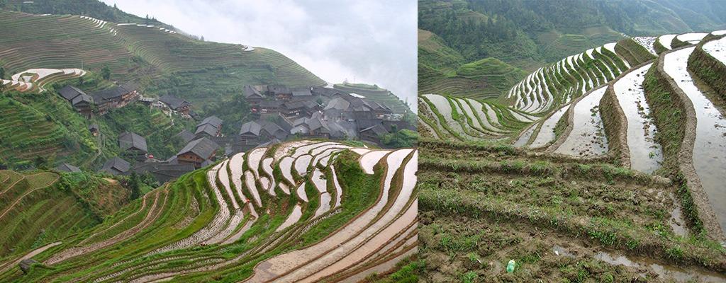 Ping-An Long Ji rijstterrassen