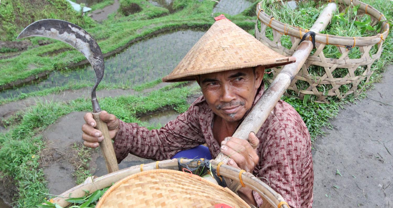 doen op Bali - bezienswaardigheden en tips