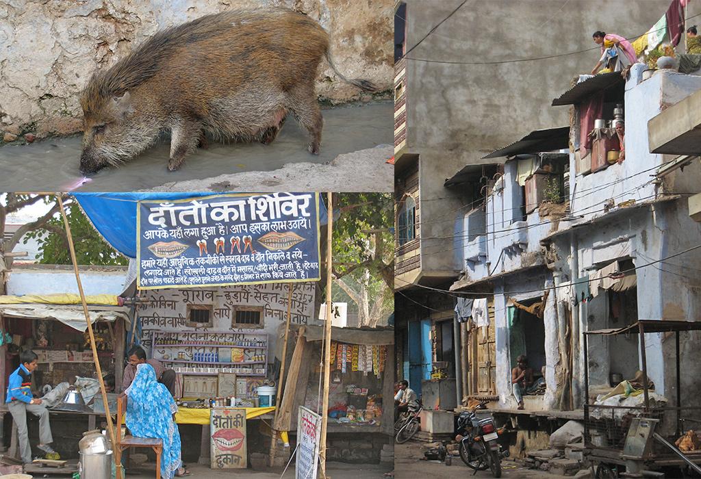 kennismaking met India