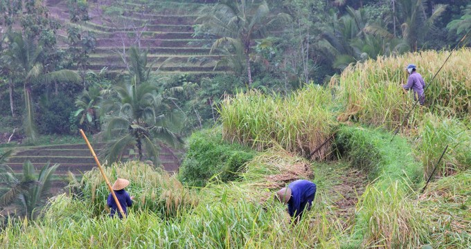 mijn niet toeristische route Java Bali Lombok