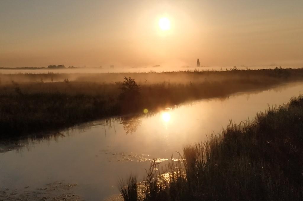mist in combinatie met de eerste zon